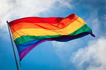 Rainbow Flag 248