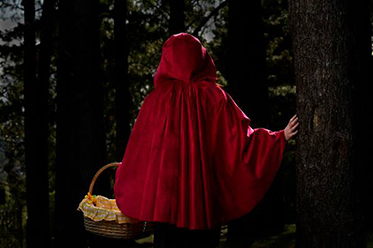 VO_Into The Woods