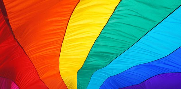 Australian Pride Network Rainbow Flag