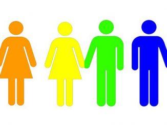 Australian Pride Network Human Rainbow