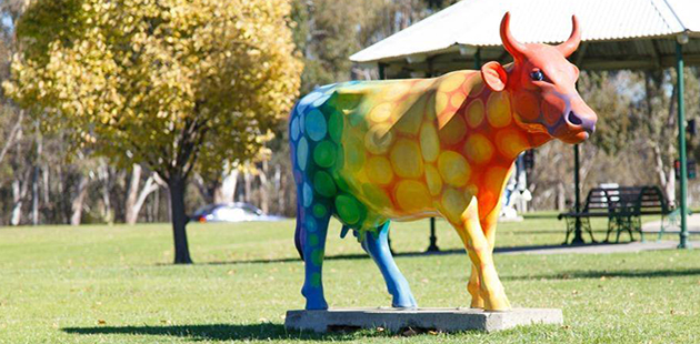 Shepparton Rainbow Cow