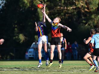 Pride Cup 2015 - photo by Theo Karanikos / AFL Media