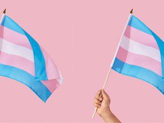 ACON Transgender Day of Visibility