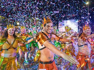 2020 Mardi Gras Parade - photo by Jeffrey Feng Photography