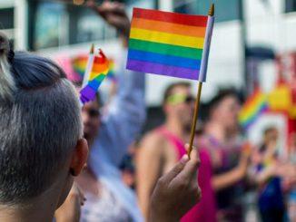 TC-APN-Rainbow-Flag-and-crowd